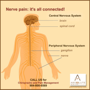 Understanding Nerve Pain Through Spine Anatomy