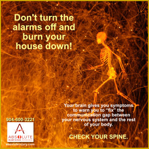 Your Spine and the Nervous System