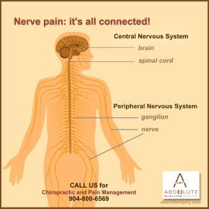 Understanding Nerve Pain Through Spine Anatomy